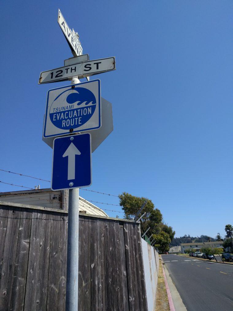 sf-treasure-island-tsunami-c-w-bound