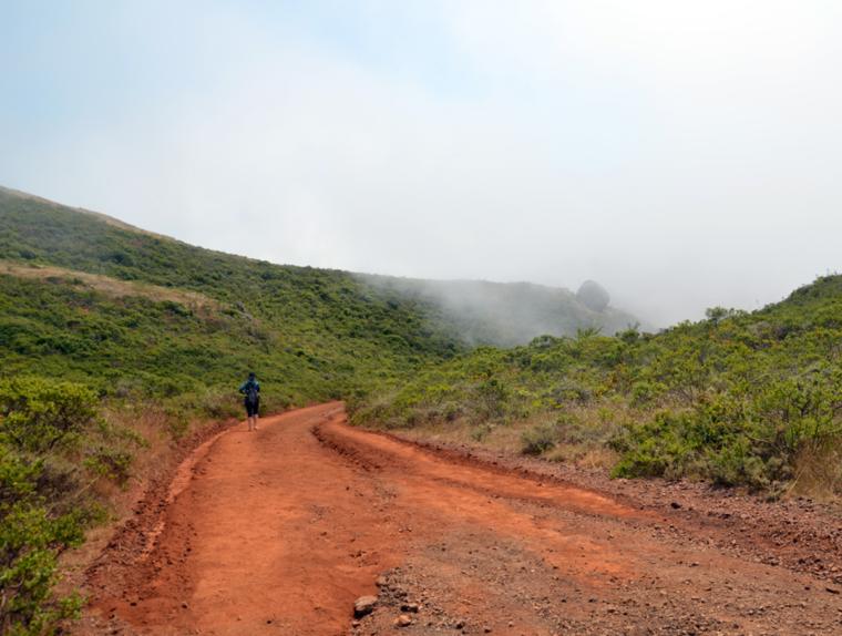 marin-hike-coastal-trail-pauline-c-w-bound