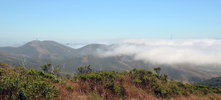 marin-rando-sf-skyline-fog-c-w-bound