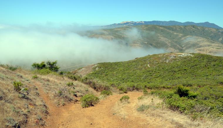 marin-rando-trail-fog-c-w-bound