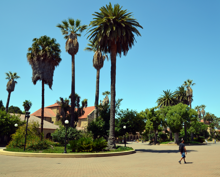stanford-main-quad-palm-trees-fred-c-w-bound