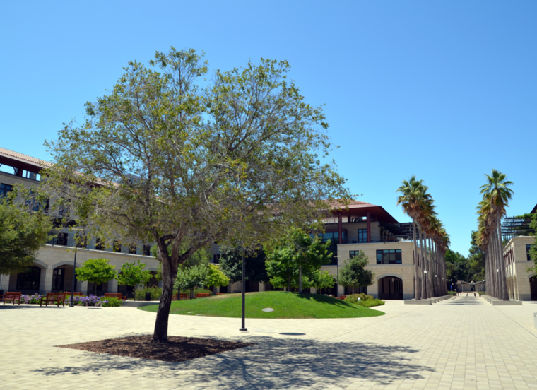 stanford-campus-buildings-c-w-bound