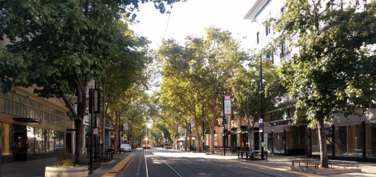 sacramento-street-trees-c-w-bound