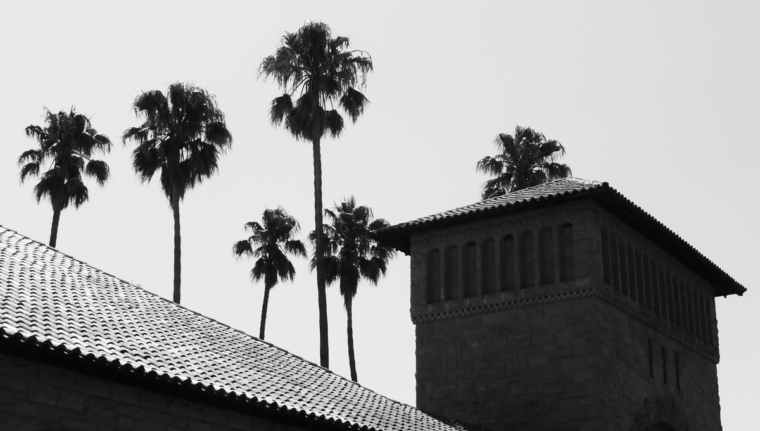 stanford-nb-palm-trees-tower-c-w-bound
