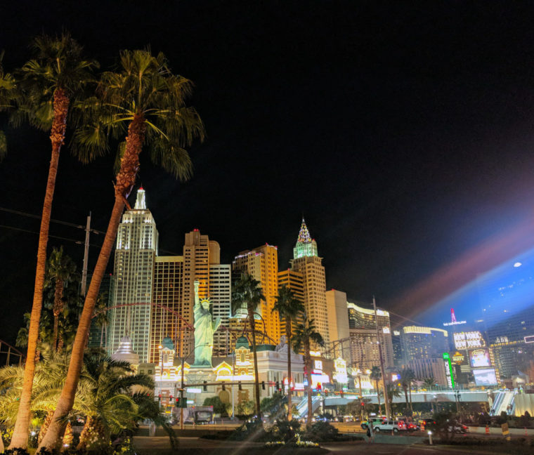 lv-new-york-palm-trees-c-w-bound