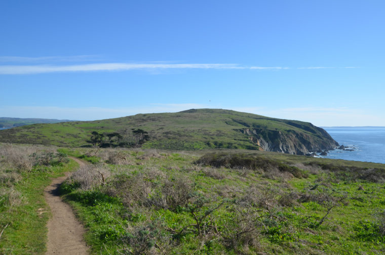 point-reyes-tomales-point-hike-c-w-bound