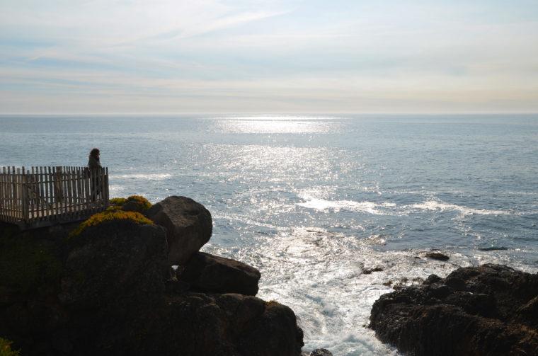 santa-cruz-pigeon-point-lighthouse-pauline-c-w-bound