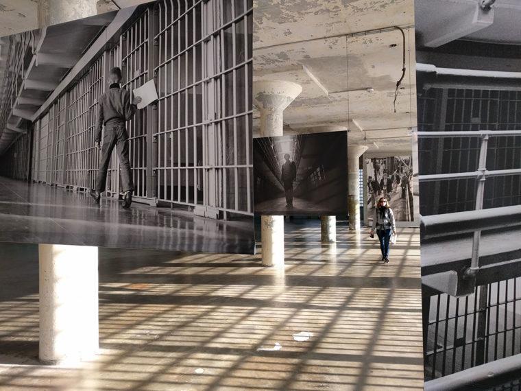Alz-photo-exhibition-eloise-c-w-bound