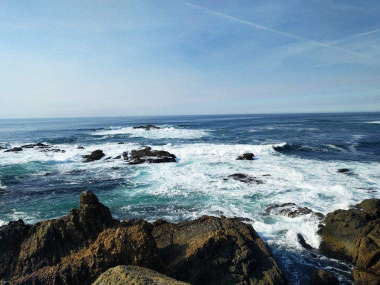 santa-cruz-panther-shark-fin-cove-c-w-bound