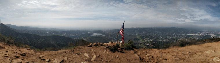 LA-HLW-wisdow-tree-flag-c-w-bound