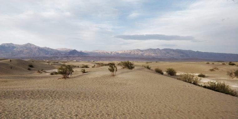 DeathValley-mesquite-dune-c-w-bound