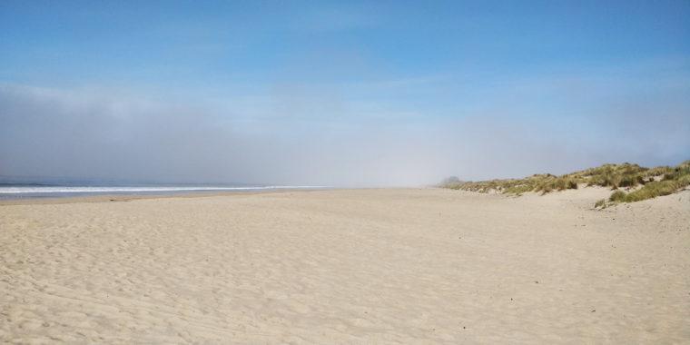 PC-limantour-beach-fog-pauline-c-w-bound