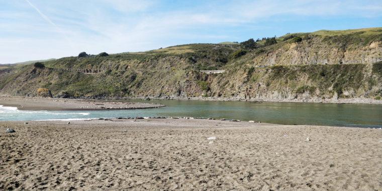 PC-goat-rock-beach-sea-lions-c-w-bound