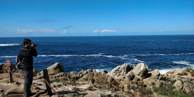 Point-Lobos-Bastien-photo-c-w-bound