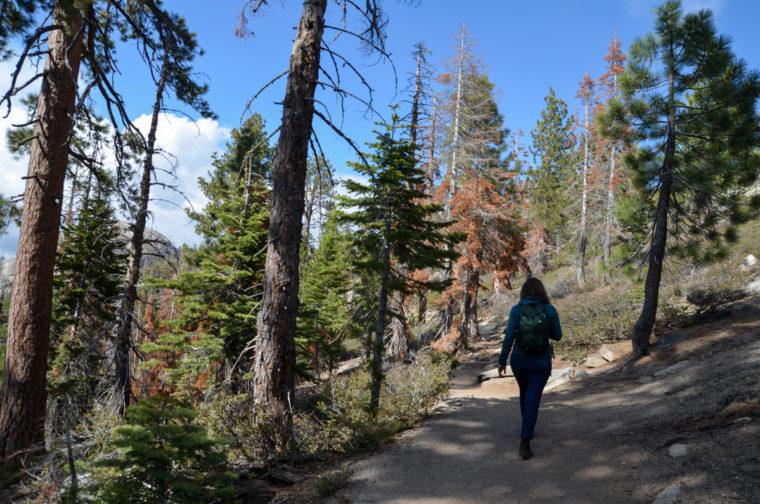 Yosemite-sentinel-dome-trail-pauline-c-w-bound
