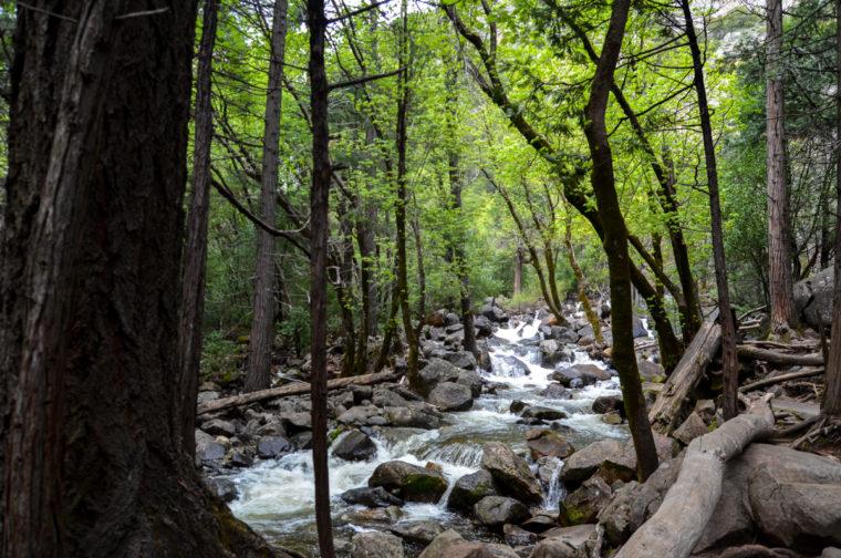 Yosemite-bridalveil-falls-stream-c-w-bound