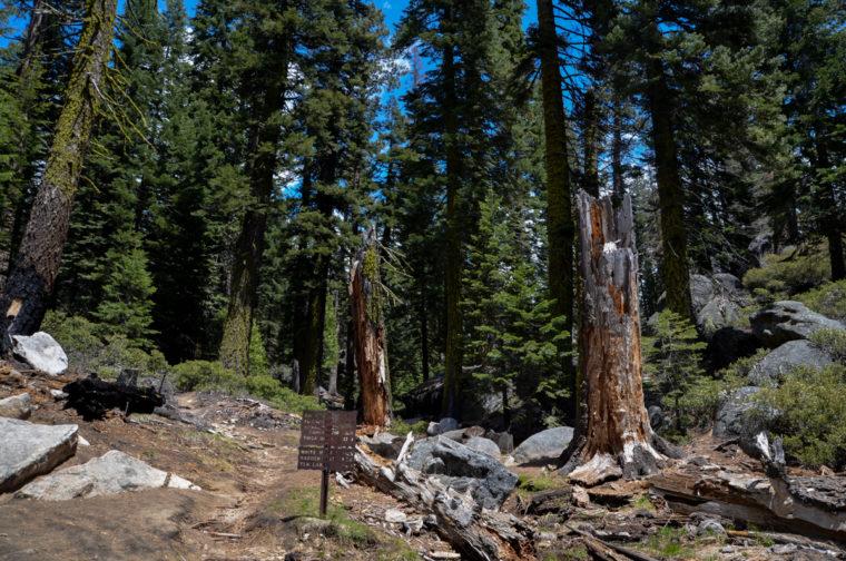 Yosemite-upper-falls-trails-c-w-bound