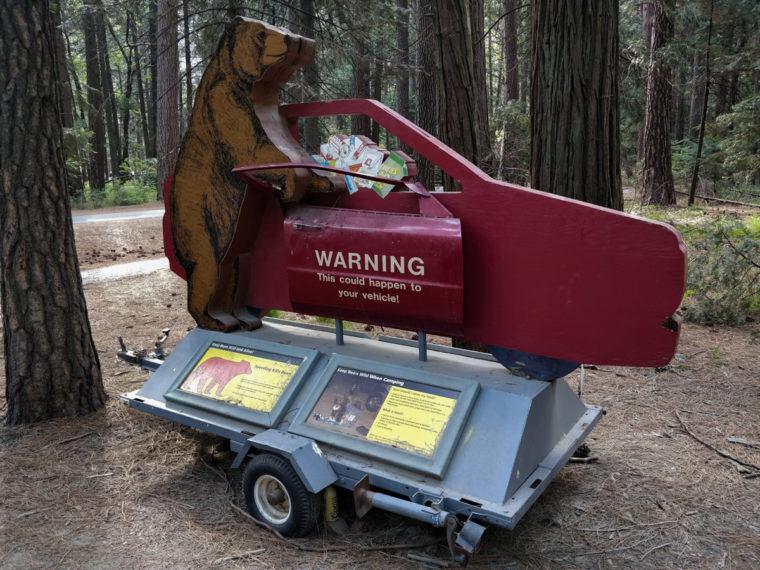 Yosemite-warning-bear-c-w-bound