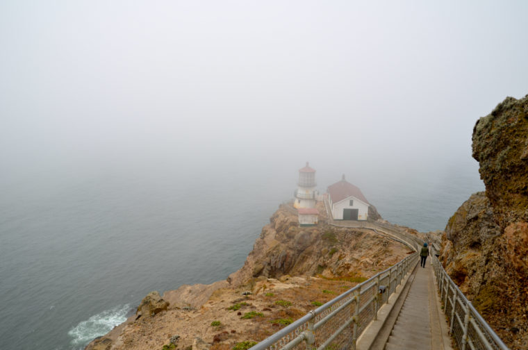 cote-pacifique-2-point-reyes-lighthouse-pauline-c-w-bound