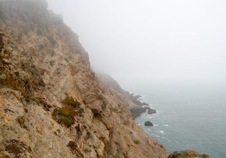 cote-pacifique-2-point-reyes-coast-c-w-bound