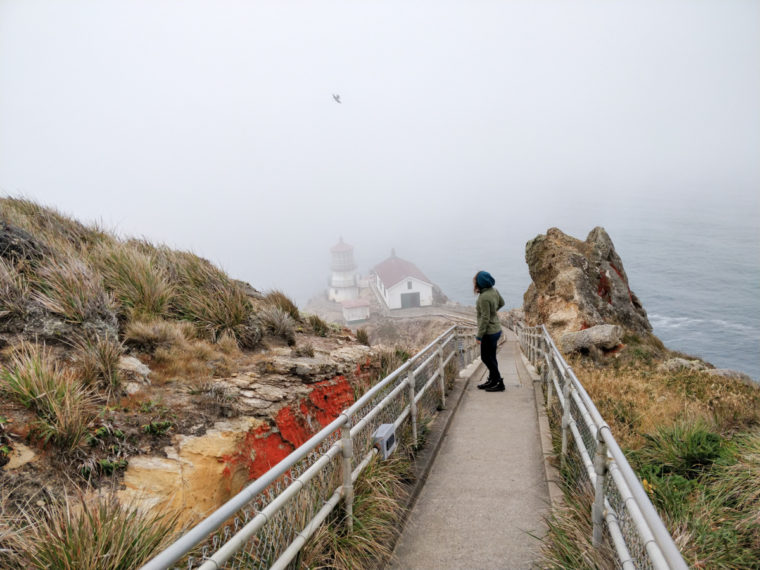 cote-pacifique-2-point-reyes-stairs-pauline-c-w-bound